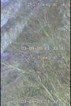 Bt20090304